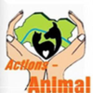 Actions-Animal-pI2bv