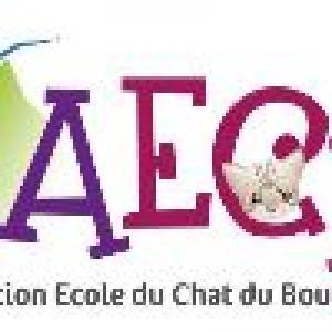Association-Ecole-du-Chat-du-Boulonnais-xv5ry